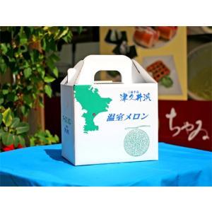 横須賀のマスクメロン3L 1玉|e-chai|03