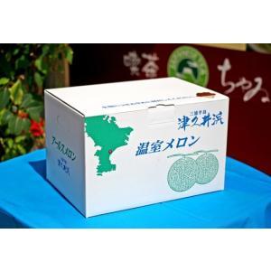 横須賀のマスクメロン3L 2玉|e-chai|06