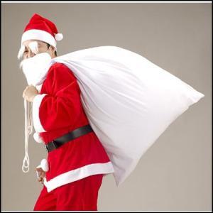 サンタクロースの袋(サンタさんの大きな袋) 綿100% 110×80cm【サンタコスチューム・コスプレ・クリスマス衣装】 e-christmas