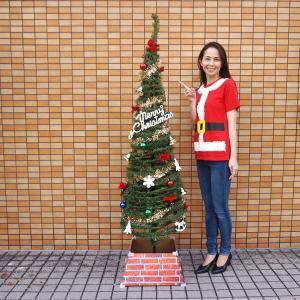 [在庫限り]スペシャルお買得 クリスマスツリーセット 簡単組立オーナメント付 180cm|e-christmas