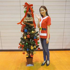 【在庫限り!特価品】クリスマスツリーセット レッド 180cm(オーナメント付) / 装飾 ディスプレイ 飾り|e-christmas