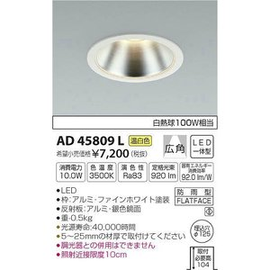 AD45809L コイズミ ダウンライト LED(温白色)