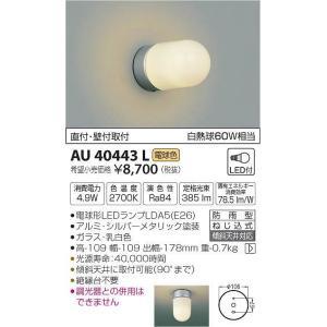 AU40443L コイズミ ポーチライト LED(電球色) e-connect