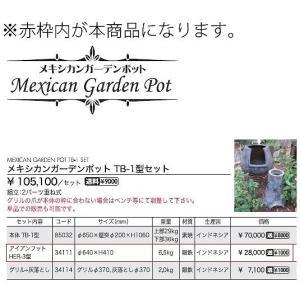 (メーカー直送) アイアンフット HER-3型 おしゃれ ガーデン ガーデニング 34111 ジャービス商事 JARBIS|e-connect