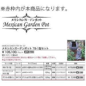 (メーカー直送) グリル+灰落とし 専用オプション おしゃれ ガーデン ガーデニング 34114 ジャービス商事 JARBIS|e-connect