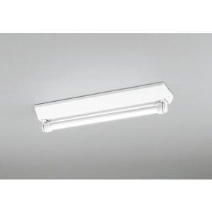 XG254080 オーデリック 屋外用ベースライト LED(昼白色) e-connect