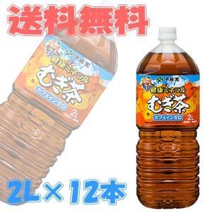 伊藤園 健康ミネラルむぎ茶(麦茶) 2L 6本入×2ケース(12本) 『送料無料(沖縄・離島除く)』