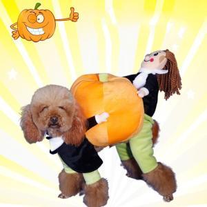 ペット用品 ペット服 猫服 犬服 可愛い おしゃれ Dog Cat お楽しみ 変身 仮装 コスプレ ハロウィン コスチューム e-dance