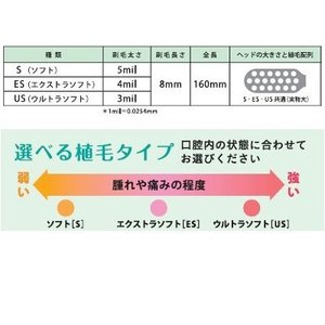 Lion/ライオン 歯科用 エラック541(介助用ブラシ)ES 20本 歯ブラシ(介助用)特にやわらかめ ハンドルカラー 緑/グリーン|e-dent|02