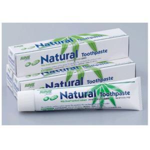 ファイン エパック:21 ニューナチュラルハミガキ(Natural Toothpaste)140g 1本 歯磨き粉 医薬部外品|e-dent