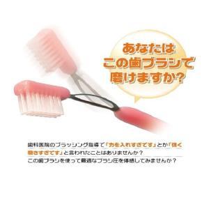 中原歯科医院 歯科用 テキアツ君 250M(適圧歯ブラシ)1本 歯ブラシ ふつう|e-dent|02