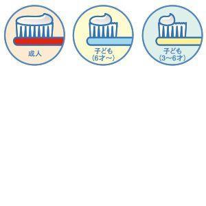 オーラルケア 歯科用 歯磨きジェル Newパッケージ ホームジェル 56.6g 1本 医薬部外品|e-dent|03