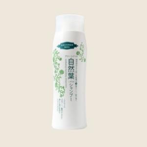 【グリーンノート】 自然葉シャンプー  1本  300ml  【全身シャンプー】【ヘアケア】 無香料・弱酸性|e-dent