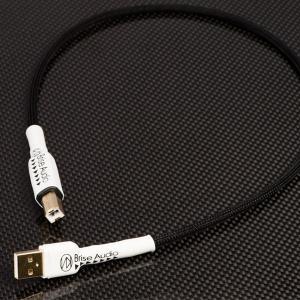 (お取り寄せ)  Brise Audio ブリスオーディオ STD-001USB [(USB Audio Class2.0対応)(30cm)] オーディオ向けUSBケーブル A-B|e-earphone