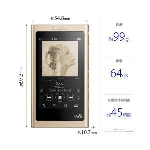 (在庫限り)ウォークマン Aシリーズ A50シリーズ 本体 SONY NW-A57 NM(ゴールド)(64GB) (送料無料)|e-earphone