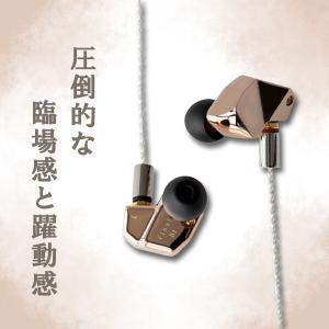 カナル型 高音質 イヤホン final B1 【FI-B1BDSSD】 リケーブル対応 イヤフォン (送料無料)|e-earphone