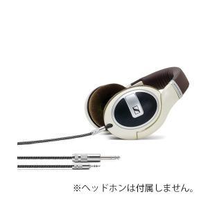 OYAIDE HPSC-35 HD500 2.5m (送料無料) e-earphone