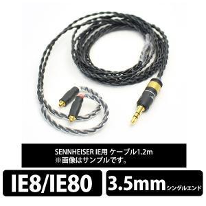 (お取り寄せ) Labkable Silver(ブラック) IE80 1.2m(納期お問い合わせくだ...