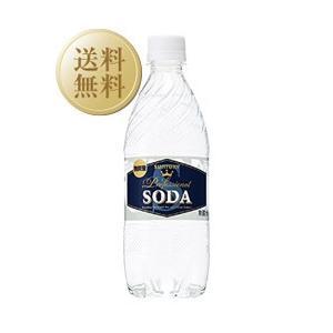 炭酸水 サントリーソーダ 強炭酸 490ml×48本(2ケー...