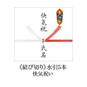 熨斗【結び切り 水引5本】 快気祝い お見舞い 等|e-felicity