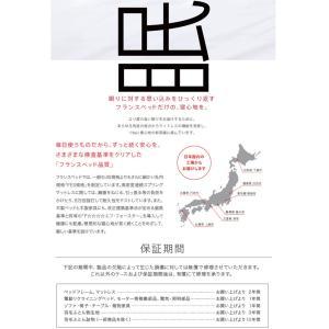 カンティーニュベッド クラシック・アンティーク風ホワイトシングルベッド kobo ノーマルタイプ マット付き 日本製 e-flat 07