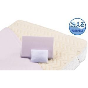 フランスベッド グッドスリーププラス三点パック シングル バイオベッドパッド&シーツ2枚セット 布団カバーセット マットレスカバー寝具|e-flat