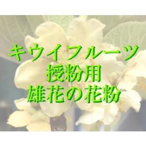 人工授粉用キウイ 花粉 1袋(お急ぎの方は、平日9〜11時ま...