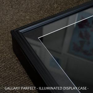 【送料無料】【アウトレット】ギャラリーパーフェクト LEDシャドーボックス額縁 356×356mm マット付き ※在庫限り※ 【GP-LT356】|e-frame|02