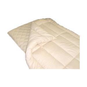 アレルギー用ダクロンアクア綿掛敷セット /シングルロング e-futon