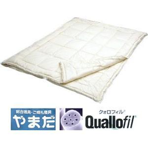 ダクロンクォロフィルアクア綿増量デュエット掛ふとん (クィーン)|e-futon