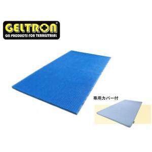 GELTRON ジェルトロン トップマットレス ベビー P-2 e-futon