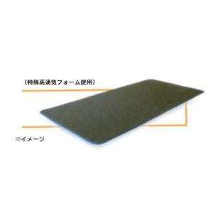 GELTRON ジェルトロン トップマットレス用 体動温度調整パッド /P-1用 e-futon