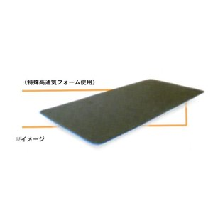 GELTRON ジェルトロン トップマットレス用 体動温度調整パッド /P-2用 e-futon