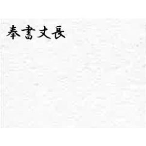 奉書丈長(ほうしょたけなが)判  ドーサ引き 5枚巻 51.5×79cm|e-gazai-tougei