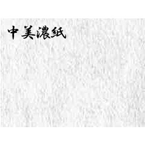 中みの紙  ドーサ引き 5枚巻 57×95cm|e-gazai-tougei