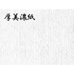 厚みの紙  ドーサ引き 5枚巻 57×95cm|e-gazai-tougei