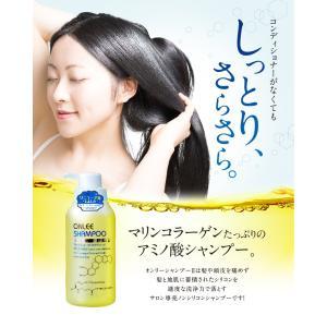 シャンプー 美容室 専売品 ノンシリコンアミノ酸系 オンリーシャンプー  リンス不要|e-goodsplus|02