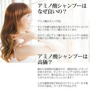 シャンプー 美容室 専売品 ノンシリコンアミノ酸系 オンリーシャンプー  リンス不要|e-goodsplus|13