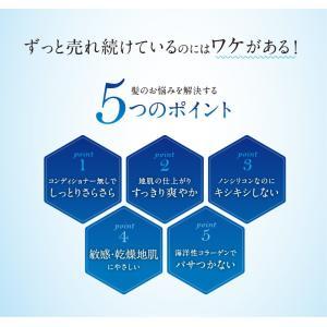 シャンプー 美容室 専売品 ノンシリコンアミノ酸系 オンリーシャンプー  リンス不要|e-goodsplus|04