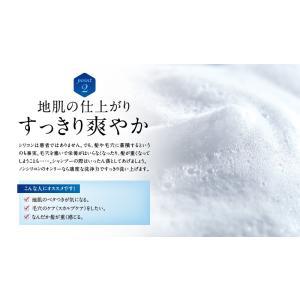 シャンプー 美容室 専売品 ノンシリコンアミノ酸系 オンリーシャンプー  リンス不要|e-goodsplus|06