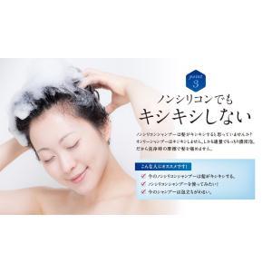 シャンプー 美容室 専売品 ノンシリコンアミノ酸系 オンリーシャンプー  リンス不要|e-goodsplus|07