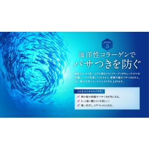 シャンプー 美容室 専売品 ノンシリコンアミノ酸系 オンリーシャンプー  リンス不要|e-goodsplus|09