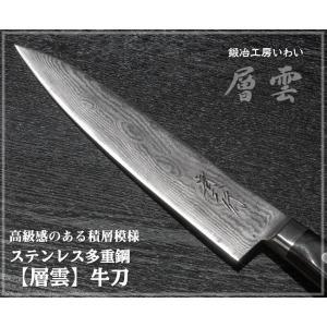錆びにくい ステンレス 包丁 越前打ち刃物 ステンレス多層鋼【層雲】牛刀 刃渡り210mm|e-hamono