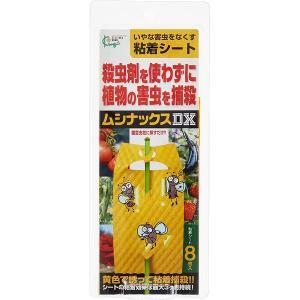 殺虫剤 コバエ 駆除 ムシナックスDX 8枚入り キング園芸 M4|e-hanas