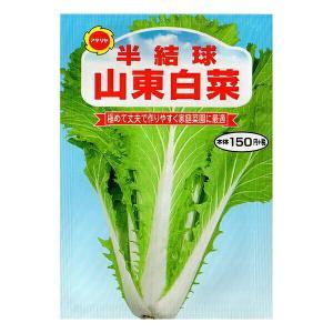 アタリヤ農園 野菜種 半結球山東白菜 M