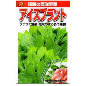 アタリヤ農園 野菜種 アイスプラント メール便対応 (B12-025)|e-hanas