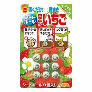 アタリヤ農園 野菜種 シードボール四季なりいちご 9個入り メール便対応 (B11-010)|e-hanas