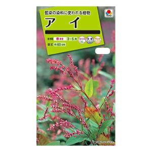 タキイ種苗 花種 アイ メール便対応 (B03-001)|e-hanas