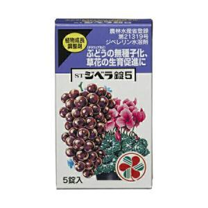 住友化学園芸 植物成長促進剤 STジベラ錠5 5錠入 メール便対応(12点まで)|e-hanas
