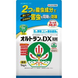 【住友化学園芸】オルトランDX粒剤 1kg
